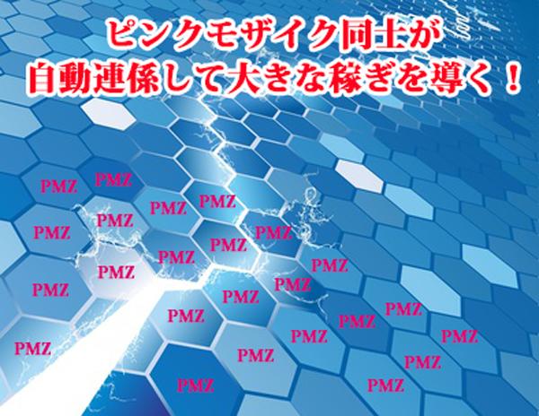 ピンクモザイク ネットワーク型