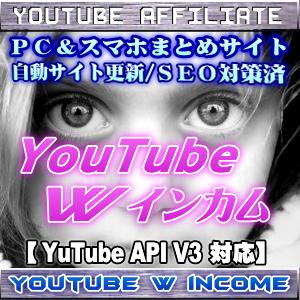 YouTube Wインカム